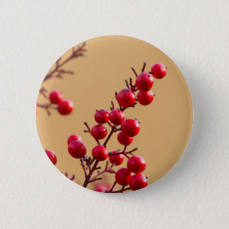red berries in the garden button
