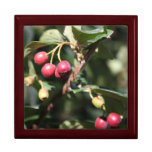 Red Berries Large Gift Box