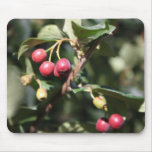 Red Berries Mouse Pads