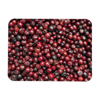 Red berries of the Himalayas Flexible Magnets