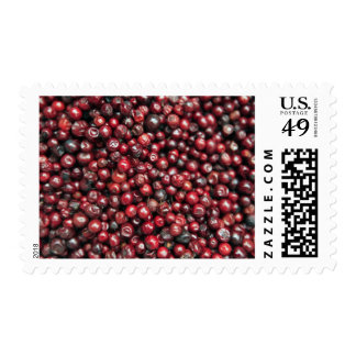 Red berries of the Himalayas Stamp