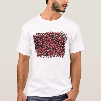 Red berries of the Himalayas T-Shirt