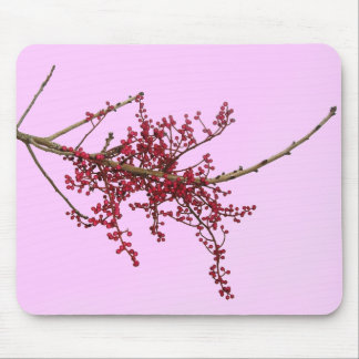 Red Berries on Dormant Tree Branch Mouse Pad