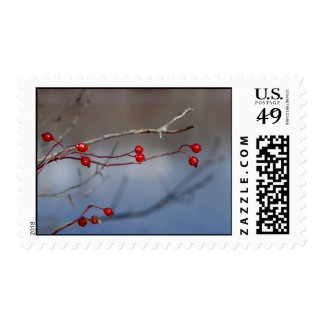 Red Berries Postage