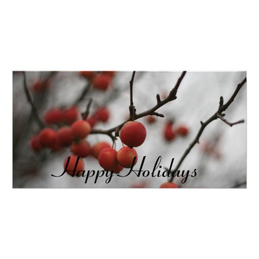 Red Berrries Happy Holidays Photo Card