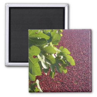 Red Berry 2 Inch Square Magnet