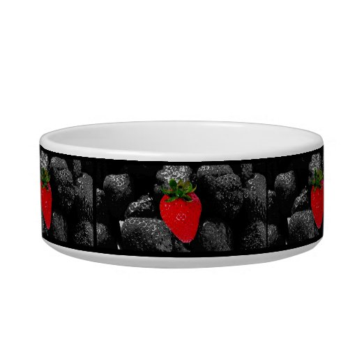 Red Berry Among The Dark Cat Bowl