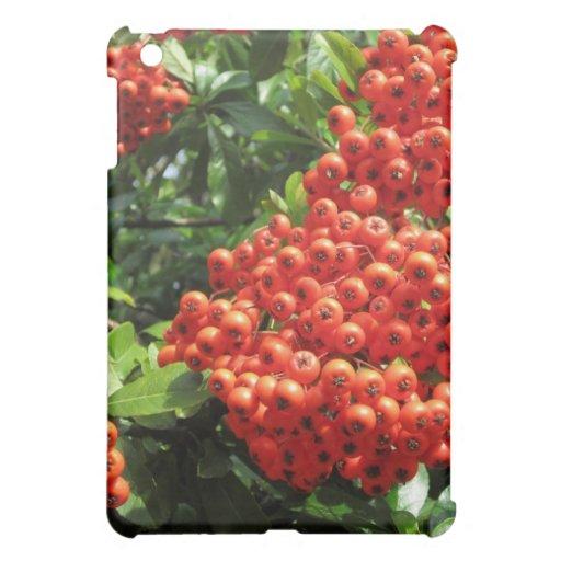 Red Berry iPad Mini Covers
