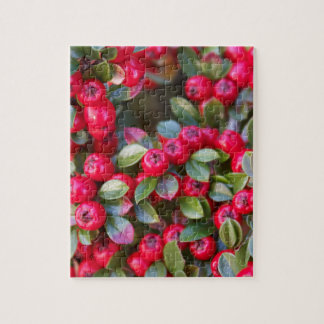 Red Berry photograph Christmas Red Berry Puzzle