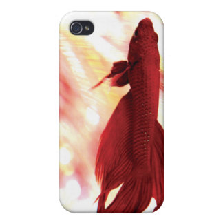 Red Betta Fish iPhone 4/4S Cases