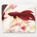 Red Betta Fish Mousepads