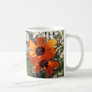 Red Bicolored Sparaxis Coffee Mug
