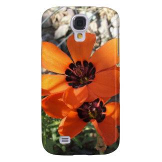 Red Bicolored Sparaxis Galaxy S4 Case