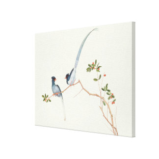 Red-billed blue magpies,a branch red berries canvas print