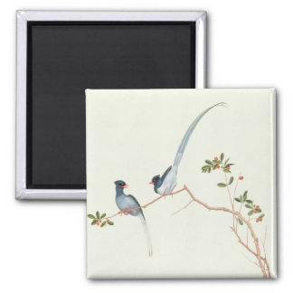 Red-billed blue magpies,a branch red berries magnet