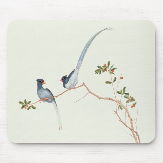 Red-billed blue magpies,a branch red berries mouse pad