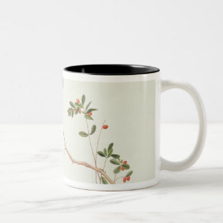 Red-billed blue magpies,a branch red berries Two-Tone coffee mug