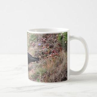 Red-billed chough coffee mug