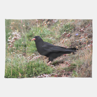 Red-billed chough hand towels