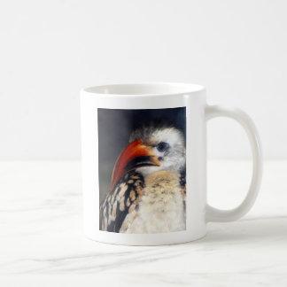 red billed hornbill coffee mug