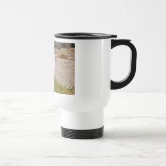 Red-billed Seagull Travel Mug