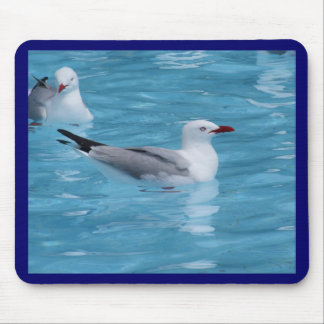 Red-billed Seagulls Mouse Pad