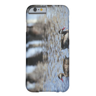 Red-billed teal (Anas erythrorhyncha) pair in Barely There iPhone 6 Case