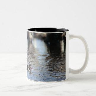 Red-billed teal (Anas erythrorhyncha) pair in Two-Tone Coffee Mug