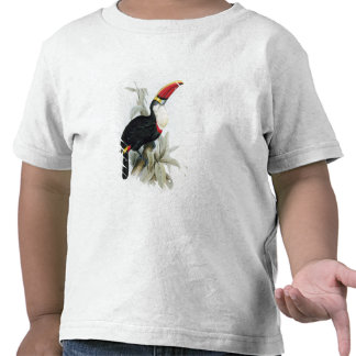 Red-Billed Toucan, from 'A Monograph of the Rampha T-shirt