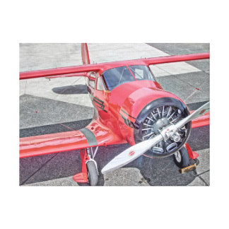 Red Biplane Delight Canvas Print