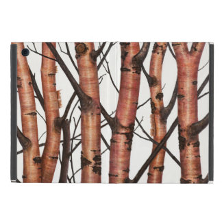 Red birches iPad mini cover