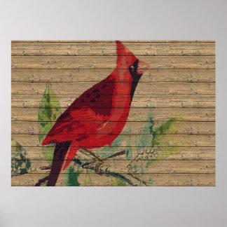 Red Bird Cardinal Photo Nature Wall Poster