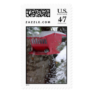 Red Bird Feeder in the snow Postage