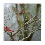 Red Bird In Winter Tile