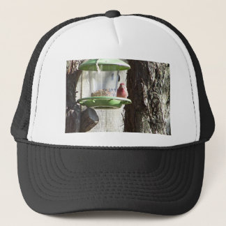 red bird trucker hat