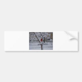 Red Bird (winter storm) Bumper Sticker