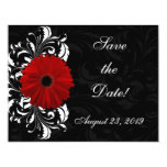 Red, Black and White Scroll Gerbera Daisy 4.25x5.5 Paper Invitation Card