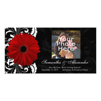 Red, Black and White Scroll Gerbera Daisy Photo Card
