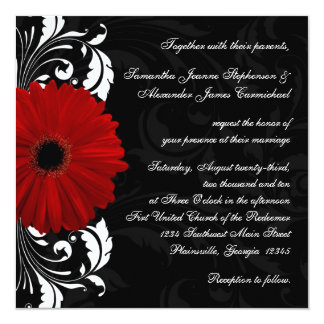 Red, Black and White Scroll Gerbera Daisy Square Card