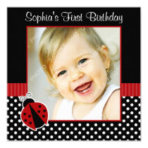 Red Black Ladybug Polka Dot 1st Birthday Photo Card