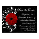 Red+Black+White Gerbera Daisy Save the Date Postcard