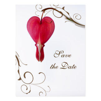 Red Bleeding Heart Wedding Save the Date Postcard