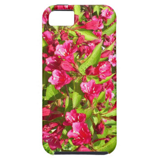 red bloom iPhone SE/5/5s case