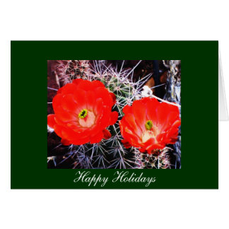 Red Blooms on Cactus Christmas Holiday Card