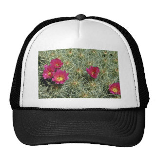 Red Blooms On Cactus flowers Trucker Hat