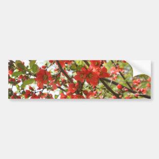 Red Blossoms Flower Photo Bumper Sticker Car Bumper Sticker