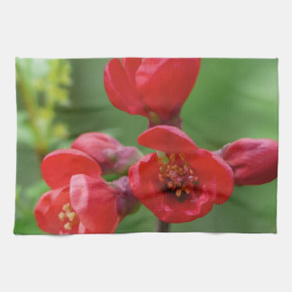 Red blossoms in spring kitchen towel