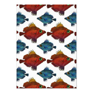 Red & Blue Big & Little Tropical Fish on White Card