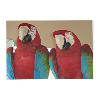 Red, Blue, Green Macaws (Parrots) Placemat