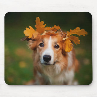 Red Border Collie With a Garland of Autumn Leaves Mouse Pad
